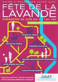 FETE DE LA LAVANDE 2011